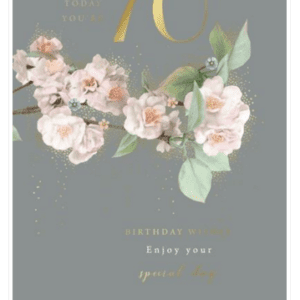 Age 70 Female Birthday Card - Finesse Kingfisher Cards