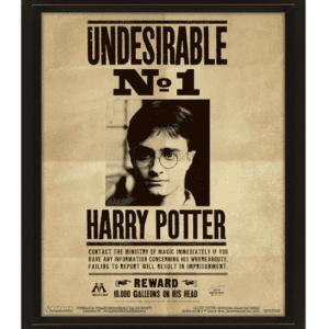 Harry Potter (Potter / Sirius) 3D Lenticular Poster